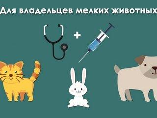 Центральная Ветеринарная Клиника в Архангельске